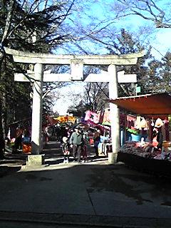 諏訪神社に行ってきました。